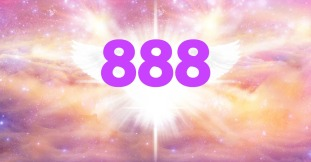 888day